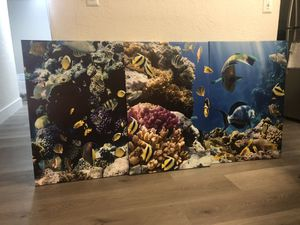Fish Canvas for Sale in Hialeah Gardens, FL