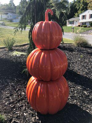 Orange pumpkin for Sale in Goldsboro, PA