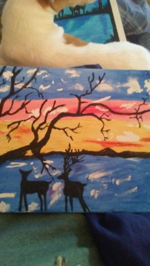 Deer with water sunset for Sale in West Monroe, LA