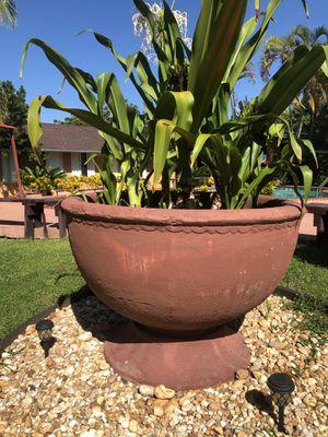Huge plant pot for Sale in Miami, FL