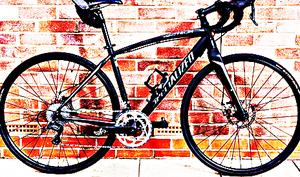 FREE bike sport for Sale in Bowdoinham, ME