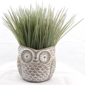 Lulu Cute owl flower pot for Sale in Orlando, FL