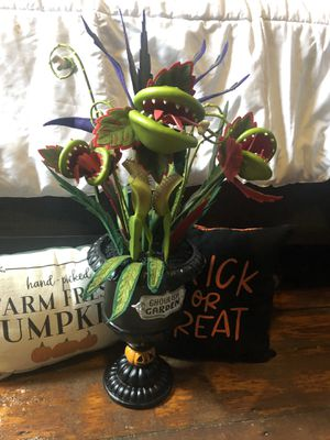 Ghoulish Garden Halloween Plant- Hyde and Eek! for Sale in Woonsocket, RI