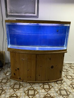 72 bow front fish tank for Sale in Elgin, IL