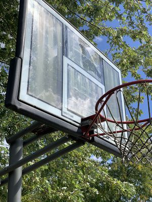 Basketball hoop for Sale in Hinsdale, IL