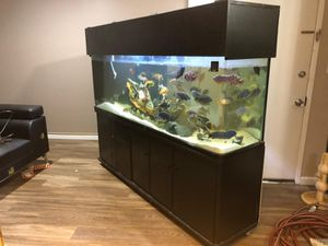 Fish tank aquarium 150gl ON Rollers for Sale in Los Angeles, CA