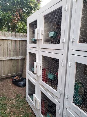 Cage chicken birds or quail for Sale in Houston, TX