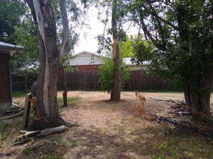 FREE 6foot Cedar Fence 300Feet for Sale in Denver, CO