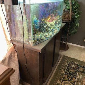 fish tank and accessories moving must sale for Sale in Norco, CA