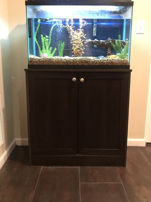 29 gallon fish take with stand. Includes everything in picture (including fish). for Sale in Geneva, IL