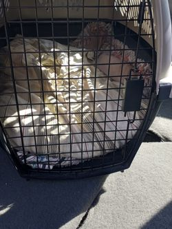 Large, gray cat carrier for Sale in Fife,  WA
