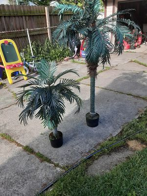 Palm trees decor for Sale in Cleveland, OH