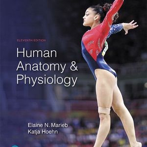 Human Anatomy & Physiology 11th Edition for Sale in Brentwood, CA