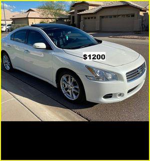 $1200 MAxima SV for Sale in Lincoln, NE
