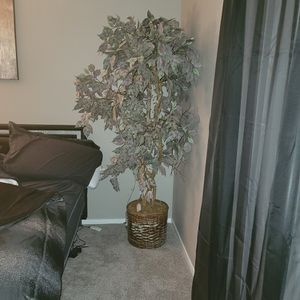 6ft Fake Plant for Sale in Las Vegas, NV