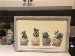 Succulent picture for Sale in Dickinson, TX