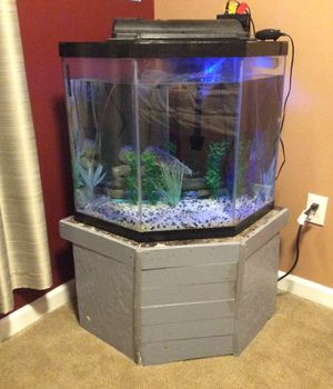 Corner fish tank for Sale in Nicholasville, KY