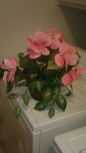 Fake. Flower for Sale in Modesto, CA