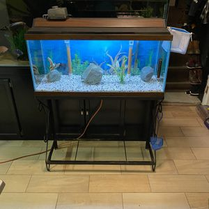30gl Fish Tank with Stand & Accessories for Sale in Burbank, IL