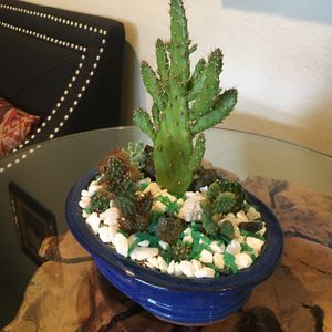 Small ceraramic centerpiece Cactus for Sale in Bloomington, CA