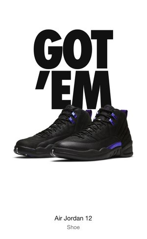 Jordan Retro 12 Black Concord size 10 in Men's for Sale in Cypress Gardens, FL