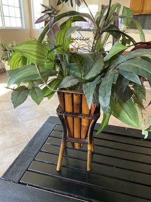 Fake plant for Sale in Murrieta, CA