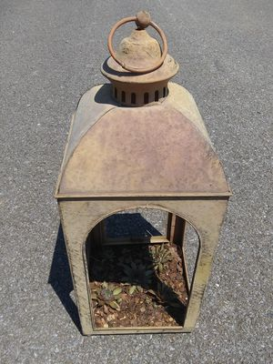 Vintage lantern with Hens and Chicks growing inside for Sale in Elizabethton, TN