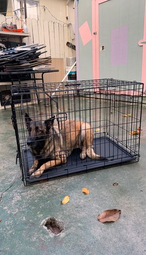 Medium size dog Crate for Sale in Richmond, CA