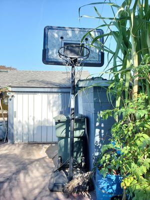Basketball hoop for Sale in San Leandro, CA