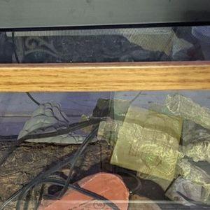 10 Gallon Reptile Tank for Sale in Anaheim, CA