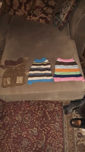 3 - Small Dog Outfits for Sale in Cadott, WI