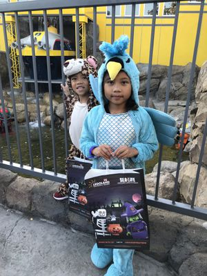 Kids costume for Sale in Glendora, CA