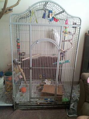 Large birdcage for Sale in Pittsburgh, PA
