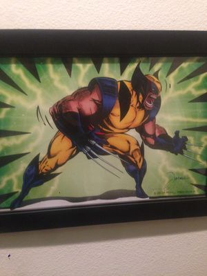 Wolverine collection for Sale in Pflugerville, TX