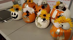 Custom made pumpkins for Sale in Raleigh, NC