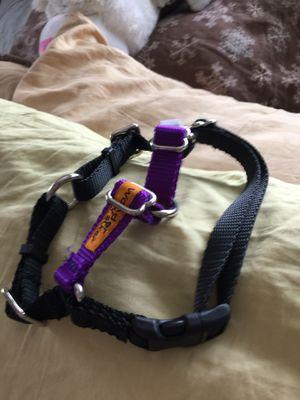 Wonder walker never used harness for Sale in Renton, WA