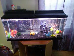 Fish tank 50 Gallon for Sale in Baltimore, MD