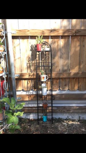 Succulents 🌱 cactus 🌵 with plant stand for Sale in San Antonio, TX
