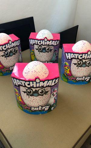 Hatchimals!!! for Sale in Saint Petersburg, FL