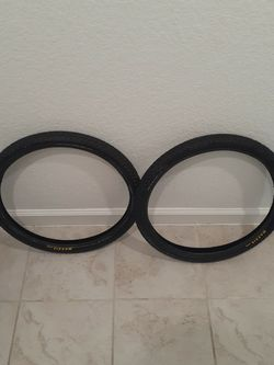 Maxxis Holy Roller 20 X 1.75 for Sale in Orange City,  FL