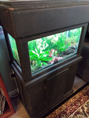 20G Aquarium - Full Setup for Sale in Houston, TX