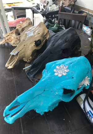 Skull decor for Sale in Big Sandy, TX