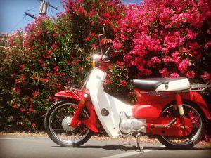 Honda Super Cub Passport C70 for Sale in Sunnyvale, CA
