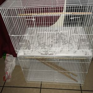 Parakeets And Cages for Sale in Bell Gardens, CA