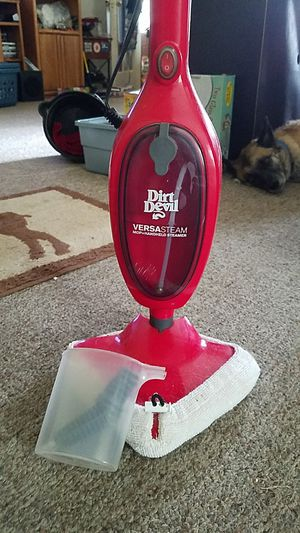 Steam cleaner for Sale in Waterford, WI