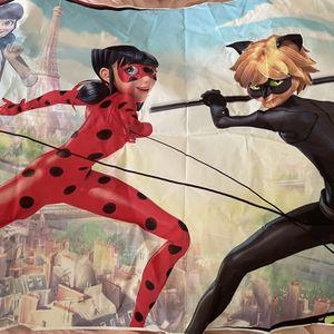5x3 Ladybug & Catnoir Backdrop for Sale in Mesquite, TX