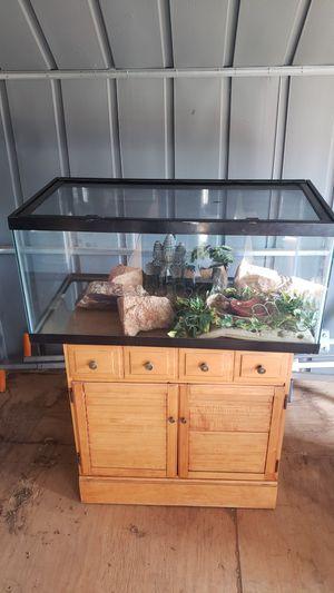 Terrarium for Sale in Phoenix, AZ