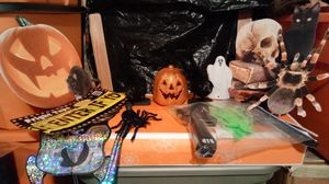 Halloween Decorations for Sale in Martinsburg, WV