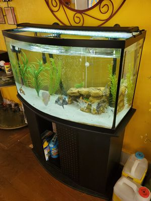46g bowfront aquarium for Sale in Lynwood, CA