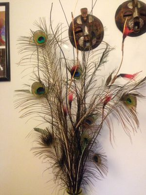 """5'1"""" tall natural decor with real peacock feather for Sale in Ellicott City, MD"""